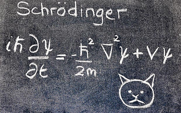 """SCOTUS Pwns Obama with a """"Schrodinger's Cat"""" Solution ..."""
