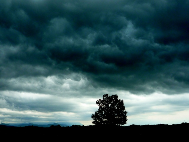 Rain-clouds-tree-storm-landscape-darkness-365-2009-07