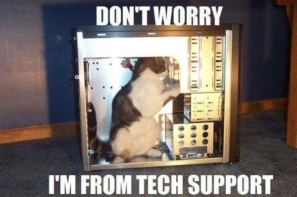 cat-tech-support1
