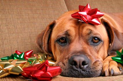 Sad Christmas 7